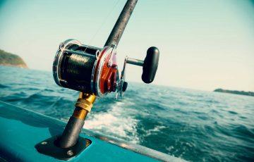 big_fish_comunicacao_pescar